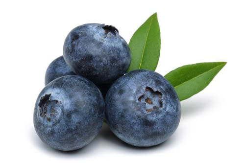 Fruit Purees Supplier | The PROgram | Lehigh Valley PA
